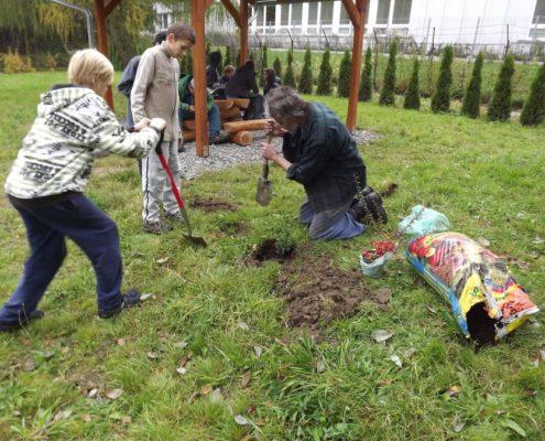 Projekt - přírodní učebna