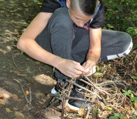 Pracovní činnosti v lese