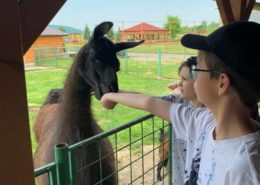 Dětský ranč Hlučín